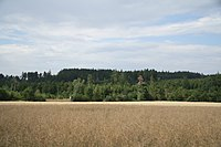 Overview of Pekelný kopec from road to Mikulovice, Třebíč District.jpg