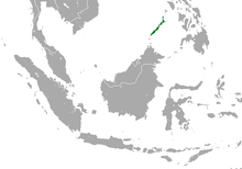 Palawan Shrew area.png