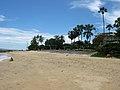 Palm Beach (2).jpg