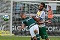 Palmeiras x Chapecoense (41830708811).jpg