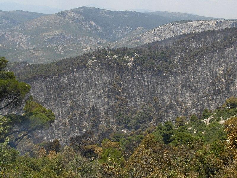 Κατά 15 μέρες ετησίως θα μεγαλώσει η επικίνδυνη περίοδος για πυρκαγιές στην Πάρνηθα