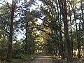 Parque Leloir - panoramio.jpg