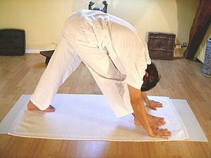 Yoga postures Parshvottanasana