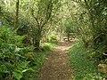 Path, to Didworthy - geograph.org.uk - 1295476.jpg