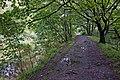 Path along The Goit - geograph.org.uk - 954575.jpg