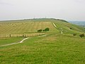 Perching Hill from Fulking Hill - geograph.org.uk - 495572.jpg