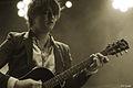Pete Doherty,Festival We Love Green, photo F. Loock (4).JPG