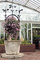 Phipps Conservatory, Wishing Well in the Broderie Room, 2015-10-24, 01.jpg