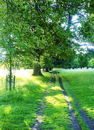 Tourism in the Republic of Ireland - Phoenix Park, the largest inner city park in Europe.