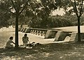 Picnic at Yanco Weir (2565776363).jpg