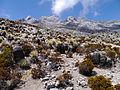 Pico Bolìvar, Venezuela (12679701683).jpg