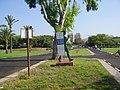 PikiWiki Israel 13985 Park Menachem Begin in Tel Aviv.JPG