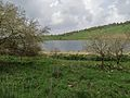 PikiWiki Israel 38125 Nature and Colors.JPG