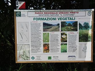 Pineto Regional Park - Information board outlining the protected plant zones in the park