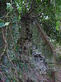 Pitshill House, Tillington 6.jpg