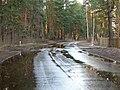 Pludi 2011 - panoramio (20).jpg
