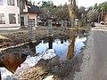 Pludi druvciema 2011 - panoramio (13).jpg
