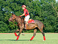 Polo At the Kentucky HOrse Park (5996460246).jpg