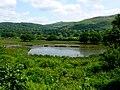 Ponds at Ynys-Hir - geograph.org.uk - 1425102.jpg