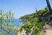 Port Cros 2013 01.jpg