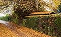 Priory Rd, Cottingham IMG 8018 - panoramio.jpg