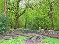 Private woodland near Sandhead - geograph.org.uk - 164849.jpg