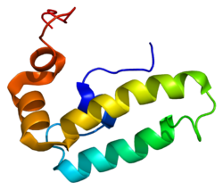 Protein DNAJB9 PDB 2ctr.png
