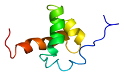 Protein NCOR2 PDB 1xc5.png