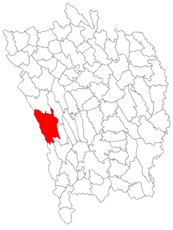 Location of Puieşti