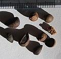 Pyrus bourgaeana seeds, by Omar Hoftun.jpg