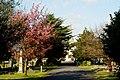 Queen's Road Cemetery, Croydon - geograph.org.uk - 1815887.jpg
