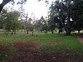 Queens Park, Toowoomba 07.JPG