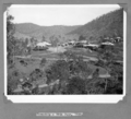 Queensland State Archives 4578 Stanley River Township 19 June 1936.png