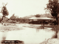Queensland State Archives 5138 Gold Sluicing Mary River near Gympie c 1896.png