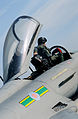RAF Typhoon Pilot Climbs into Cockpit MOD 45153409.jpg