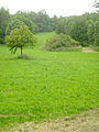 RODELBAHN-rosdorf 001.jpg