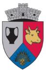 ROU CJ Ceanu Mare CoA.PNG