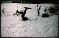 Radost z lyžování.tif