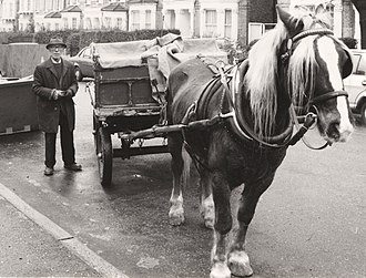 Rag-and-bone man - A rag-and-bone man with his horse and cart on the streets of Streatham, south-west London in  1985