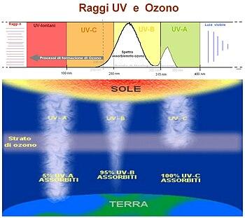 Ozonosfera Wikipedia
