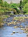 Rapids in Laxey Creek - panoramio.jpg