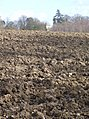 Recently ploughed field - geograph.org.uk - 374999.jpg