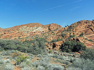 Red Cliffs National Conservation Area - Image: Red Cliffs Desert Reserve