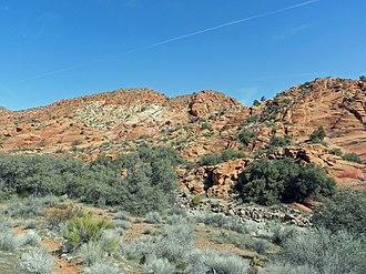 Red Cliffs National Conservation Area - Image: Red Cliffs Desert Reserve