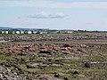Red Nab with Ocean View caravan park behind. - geograph.org.uk - 533204.jpg