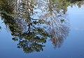 Reflections (15682453299).jpg