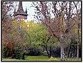 Református templom - panoramio - Szemes Elek (1).jpg