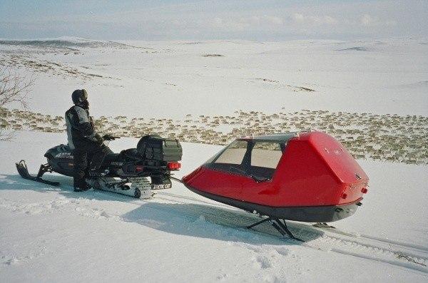 Reindeerhurding