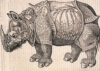 Historia animalium (Gessner) - Gessner's copy of Dürer's Rhinoceros