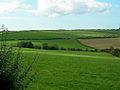 Rich Farmland - geograph.org.uk - 238328.jpg